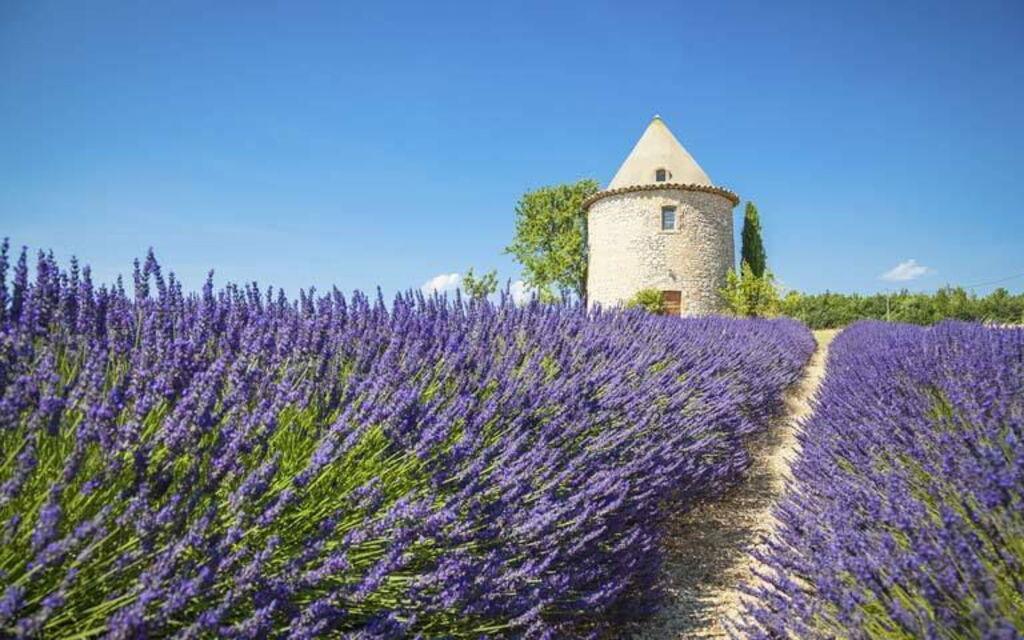 vacances au provence Locations de vacances en Provence-Alpes-Cote du0027Azur
